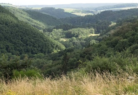 blick uebers alsbachtal